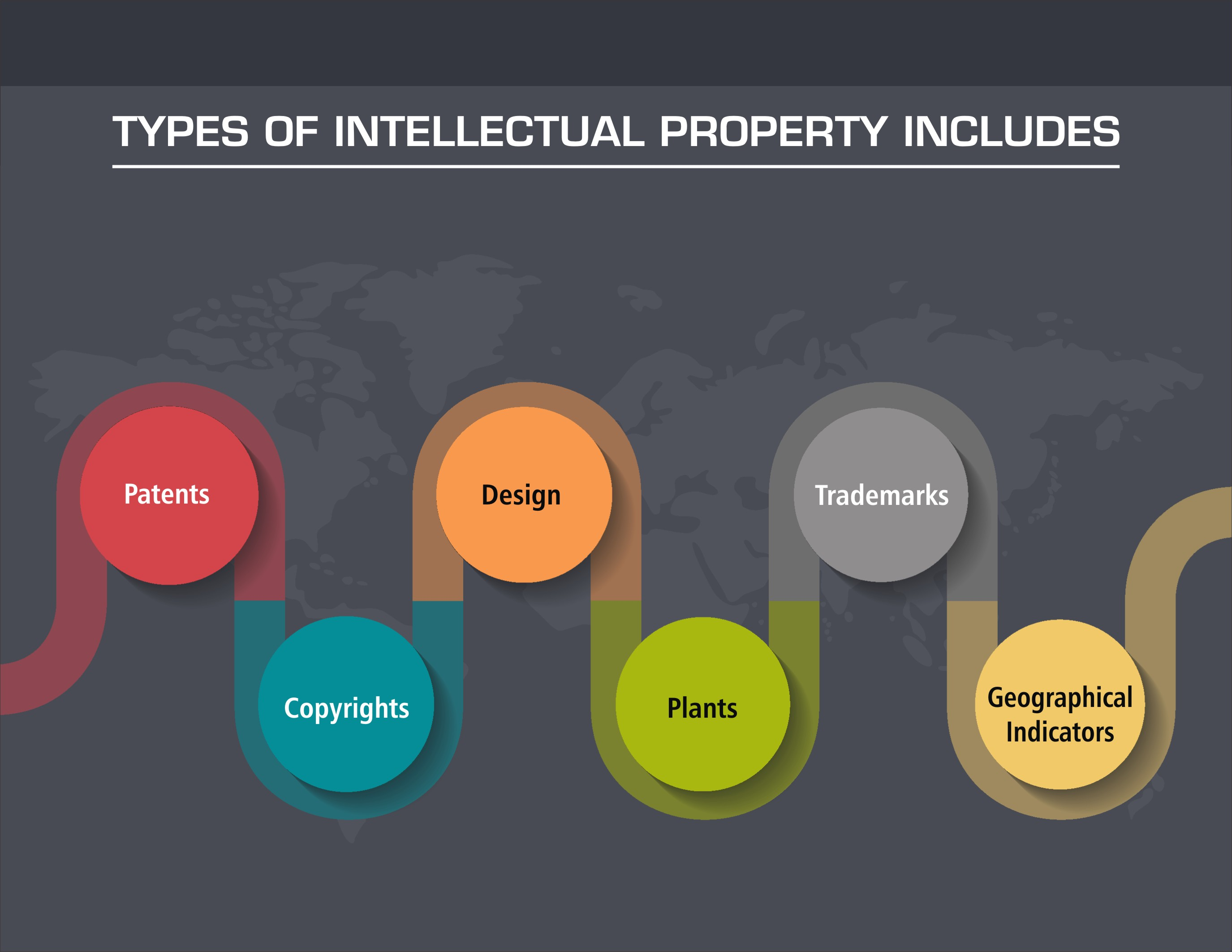 Types of Intellectual Property supported in IP Regime